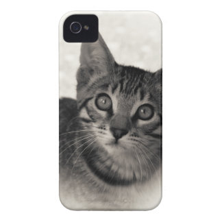 Coque iPhone 4 Case-Mate Chaton mignon du Bengale