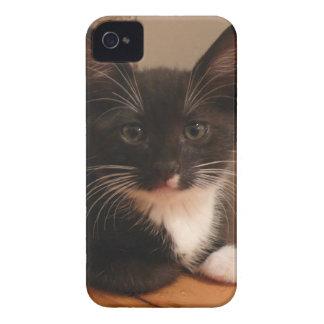 Coque iPhone 4 Case-Mate Chaton noir et blanc doux vous regardant