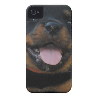 Coque iPhone 4 Case-Mate chiot de rotweiler