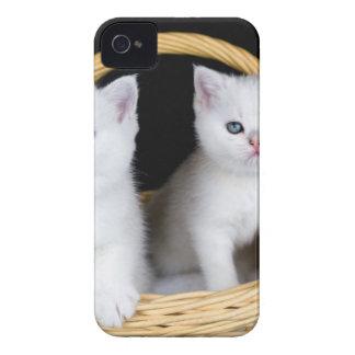 Coque iPhone 4 Case-Mate Deux chatons blancs dans le panier sur