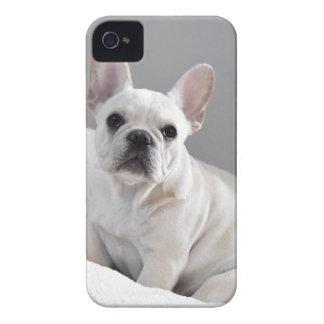 Coque iPhone 4 Case-Mate Frenchie crème
