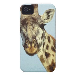 Coque iPhone 4 Case-Mate girafe drôle