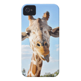 Coque iPhone 4 Case-Mate Girafe idiote