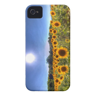 Coque iPhone 4 Case-Mate Gisements de tournesol d'été