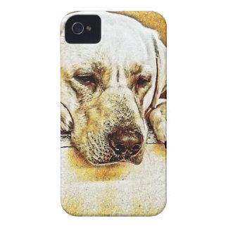 Coque iPhone 4 Case-Mate Labrador retriever jaune sur la porte