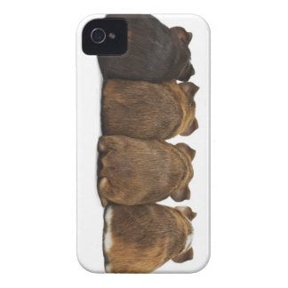 Coque iPhone 4 Case-Mate Le cobaye aboute la caisse Iphone4