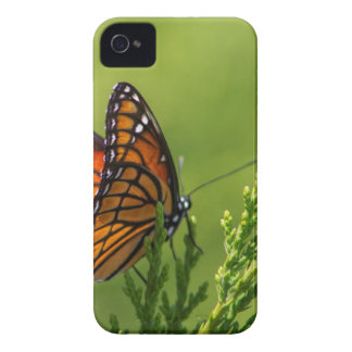 Coque iPhone 4 Case-Mate Papillon de monarque orange et noir