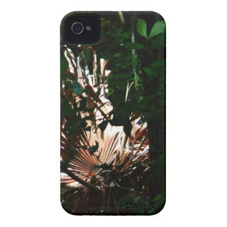 COQUE iPhone 4 Case-Mate PARC NATIONAL QUEENSLAND AUSTRALIE D'EUNGELLA