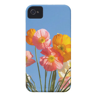 Coque iPhone 4 Case-Mate Pavots