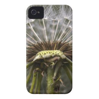 Coque iPhone 4 Case-Mate pissenlit