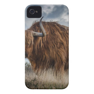 Coque iPhone 4 Case-Mate Yaks de Brown sur le vert et le champ d'herbe de