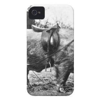 Coque iPhone 4 Cavalier de porc