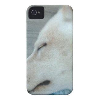 Coque iPhone 4 Chien somnolent