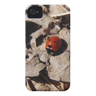 Coque iPhone 4 Coccinelle