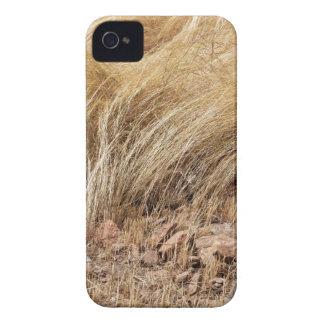 Coque iPhone 4 Détail d'un champ de teff pendant la récolte