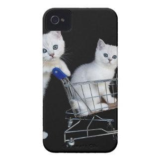 Coque iPhone 4 Deux chatons blancs avec le caddie sur black.JPG