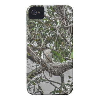 COQUE iPhone 4 KOOKABURRA ET SERPENT QUEENSLAND RURAL AUSTRALIE