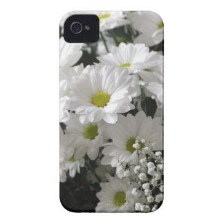 Coque iPhone 4 La marguerite blanche fleurit les fleurs blanches