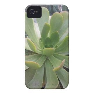 Coque iPhone 4 Plante