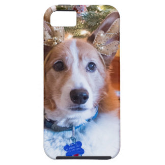 Coque iPhone 5 Case-Mate Noël de corgi de Gallois de Pembroke