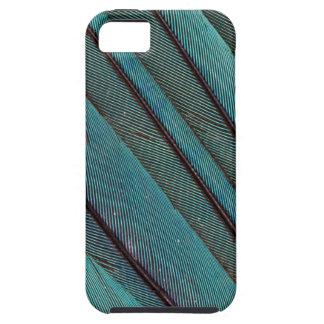 Coque iPhone 5 Conception de plume de martin-pêcheur de turquoise