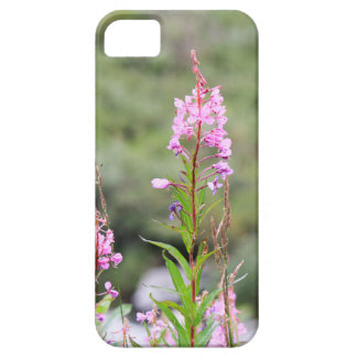 Coque iPhone 5 Fireweed