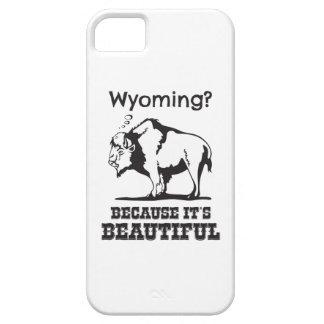 Coque iPhone 5 Le Wyoming ? Puisqu'il est beau