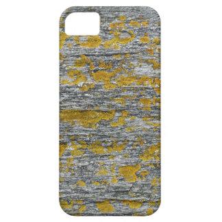 Coque iPhone 5 Lichens sur pierre de granit