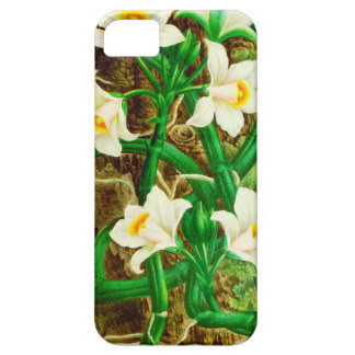 Coque iPhone 5 Orchidée de vanille du Madagascar