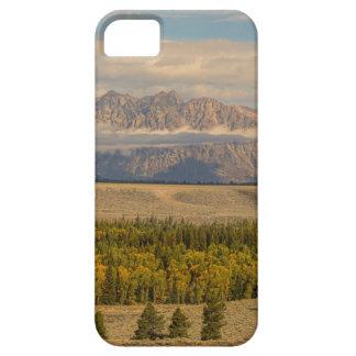Coque iPhone 5 Vues de Teton
