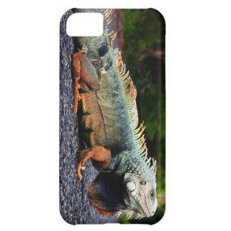 Coque iPhone 5C Caisse de cellules d'iguane de roche