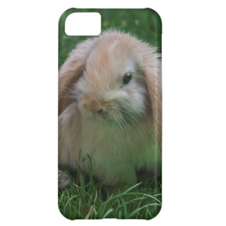 Coque iPhone 5C Cas de l'iPhone 5 de Wascally Wabbit