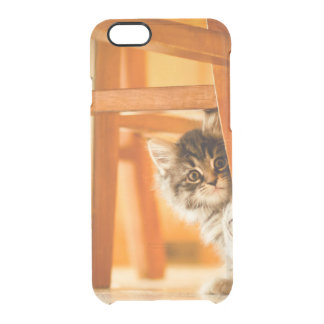 Coque iPhone 6/6S Kitty sous la chaise