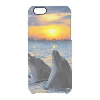 Coque iPhone 6/6S Les dauphins bouteille-flairés dans la lumière de