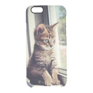 Coque iPhone 6/6S Observation tigrée de chaton