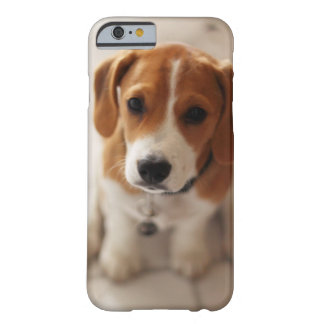 Coque iPhone 6 Barely There Chiot 2 de beagle