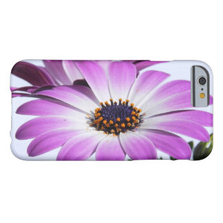 Coque iPhone 6 Barely There Marguerites roses