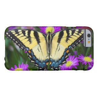 Coque iPhone 6 Barely There Papillon de machaon sur la marguerite