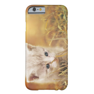 Coque iPhone 6 Barely There Petit chat doux