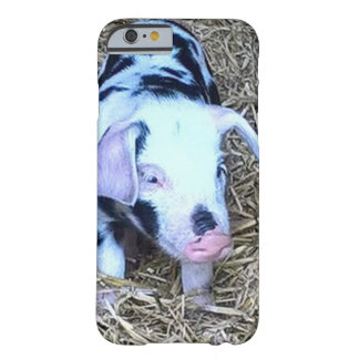 Coque iPhone 6 Barely There prochain porcelet mignon