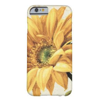 Coque iPhone 6 Barely There Un tournesol en pleine floraison
