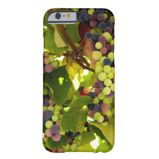Coque iPhone 6 Barely There Vin croissant