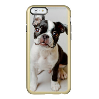 Coque iPhone 6 Incipio Feather® Shine Boston Terrier