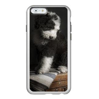 Coque iPhone 6 Incipio Feather® Shine Portrait de chiot de queue écourtée dans le studio