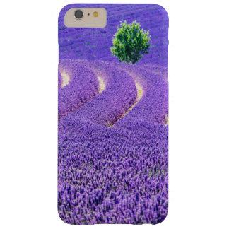 Coque iPhone 6 Plus Barely There Arbre solitaire dans le domaine de lavande, France