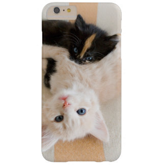 Coque iPhone 6 Plus Barely There Chatons blancs et noirs