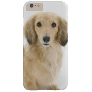 Coque iPhone 6 Plus Barely There Chien sur le divan