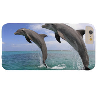 Coque iPhone 6 Plus Barely There Delfin