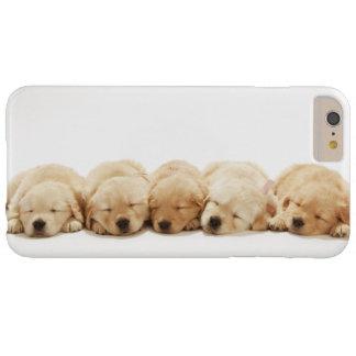 Coque iPhone 6 Plus Barely There Les chiots du golden retriever