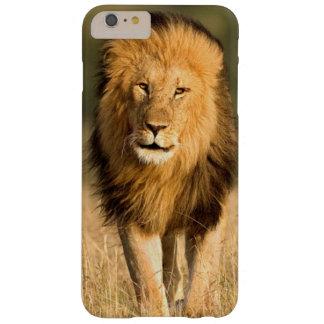 Coque iPhone 6 Plus Barely There Marche masculine de lion
